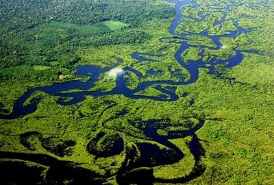 https://pbrasil.files.wordpress.com/2010/08/amazonia-vista-aerea.jpg?w=300